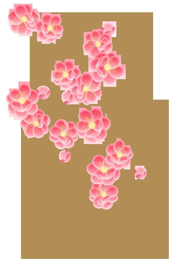季節のフリー素材 商用利用可 透過png 春 桃の節句 雛祭り おひなさま ひなあられ 桃の花 Plus Free Material